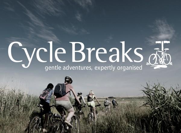 Cycle Breaks